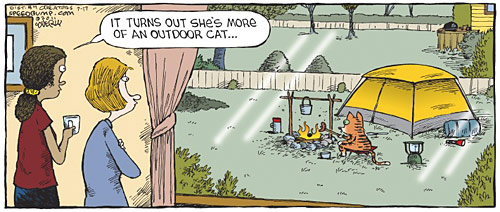 David Coverly cartoon - outdoors cat